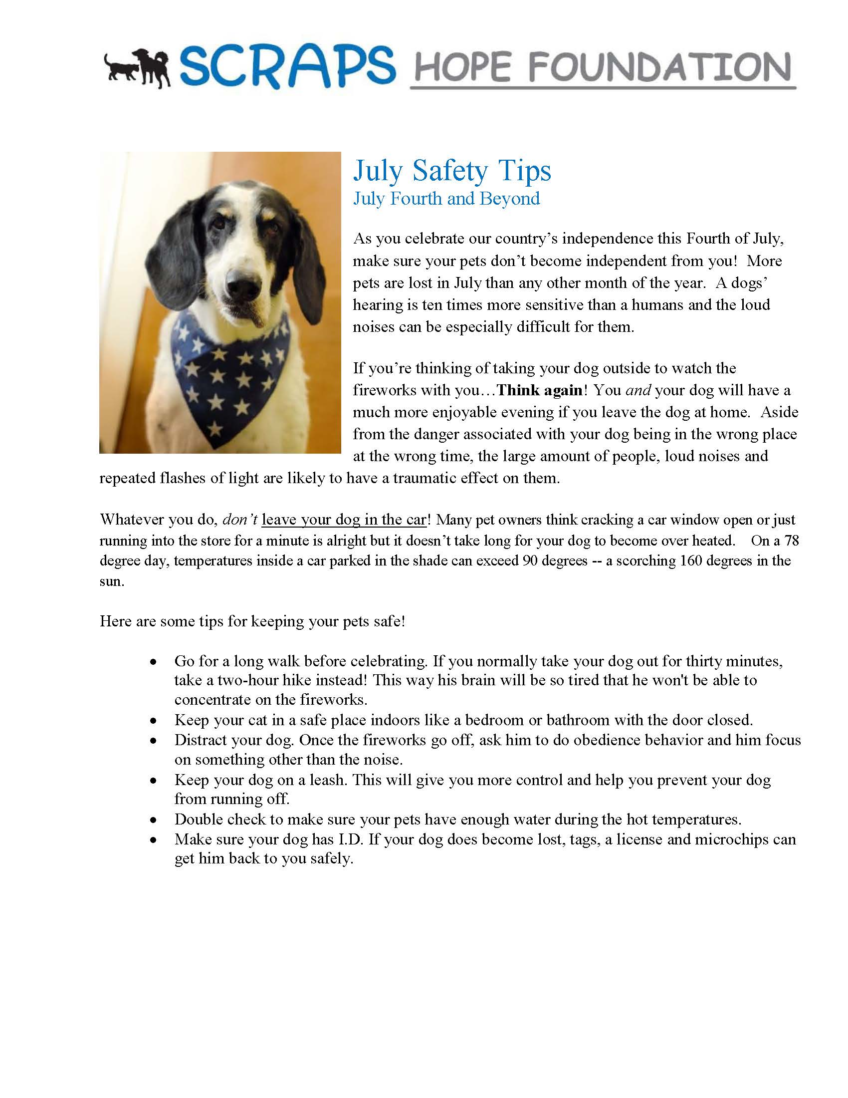 July Pet Safety Tips July Fourth and Beyond