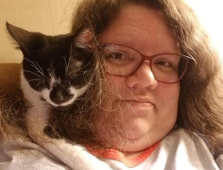 hypoglycemia symptoms in cats